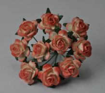 1.5cm APRICOT WHITE Mulberry Paper Roses
